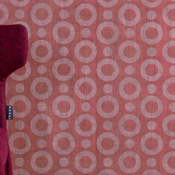 Umbrellasquid3 O966 1